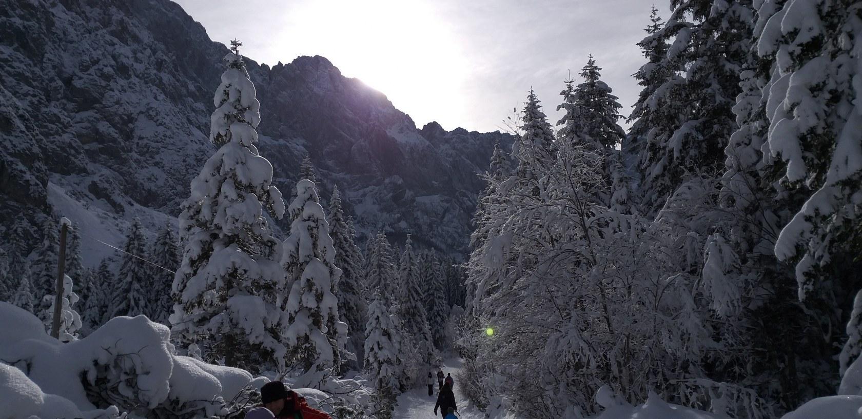 2019_01_26_planinski_izlet_tamar-36
