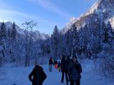 2019_01_26_planinski_izlet_tamar-16