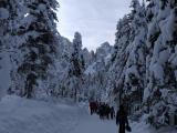 2019_01_26_planinski_izlet_tamar-25